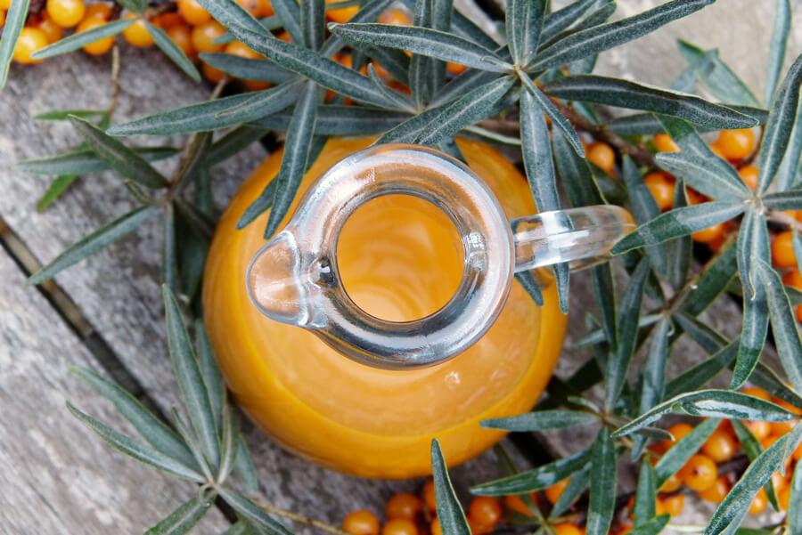 Rakytník: Podpořte imunitu a doplňte vitamin C