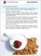 Dieta při zácpě